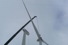 Windkraft (12)
