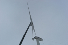 Windkraft (9)